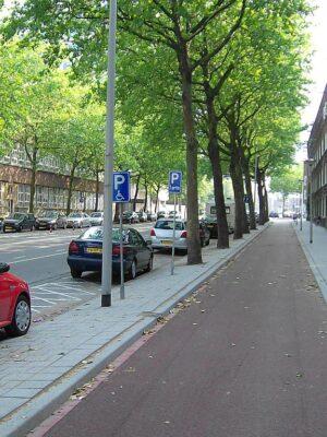 Radweg in Rotterdam